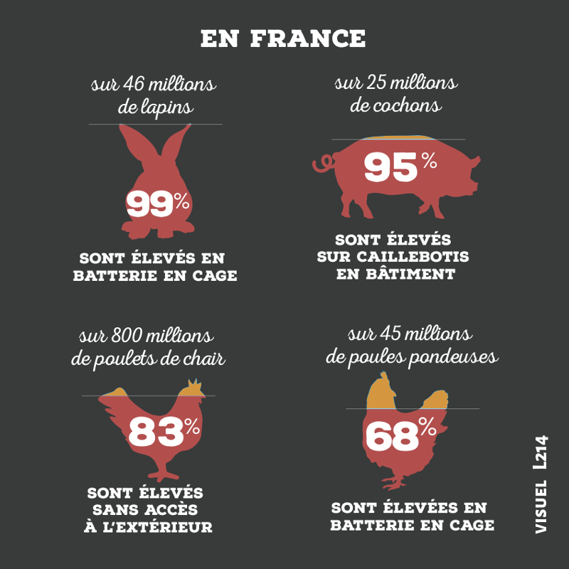 elevage_en_france